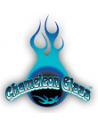 Chamaleon Glass